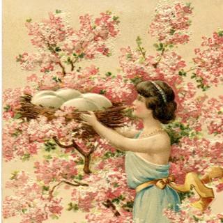Cherry Blossom Nest Image