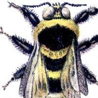 Vintage Bumblebee Image