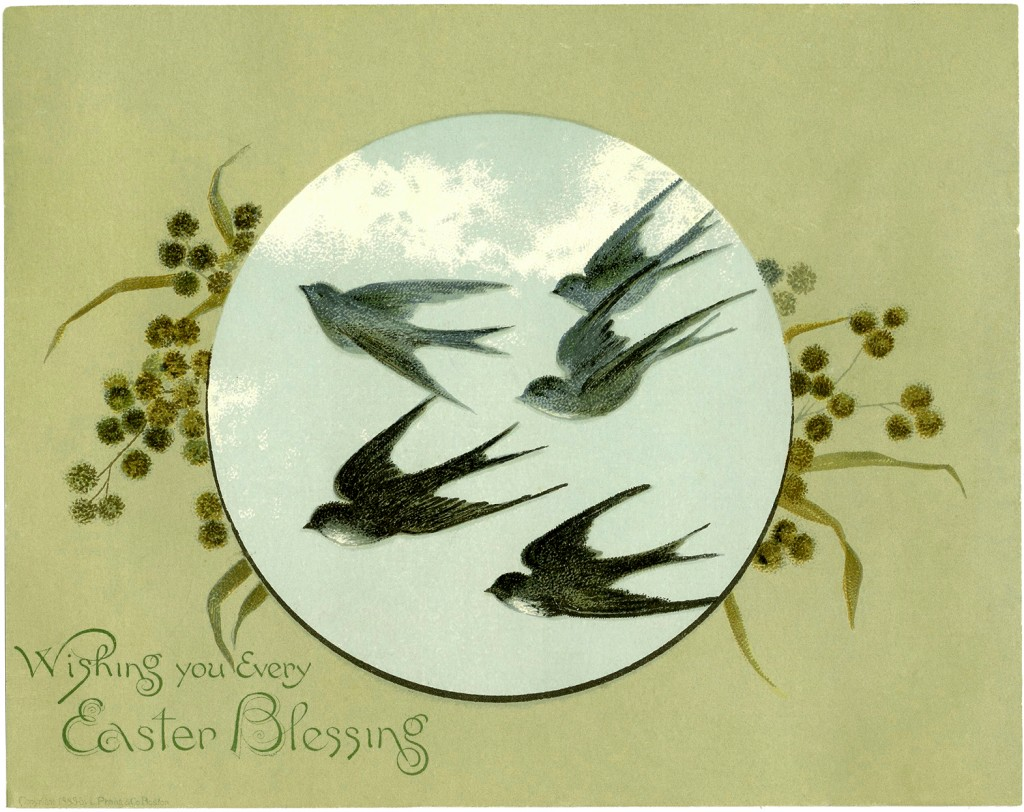 Vintage Flying Birds Image
