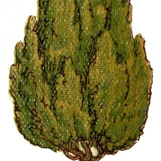 Vintage Topiary Image