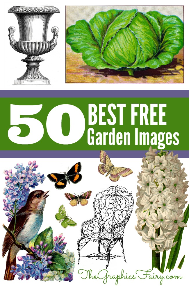 50 Favorite Gardening Images - The Graphics Fairy