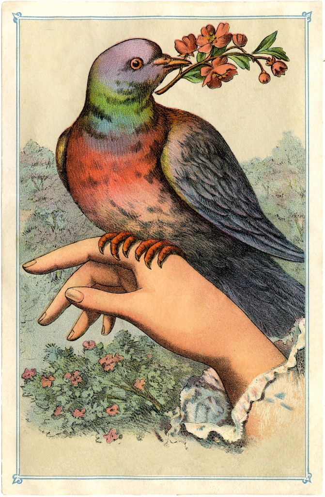 victorian bird on hand image the graphics fairy