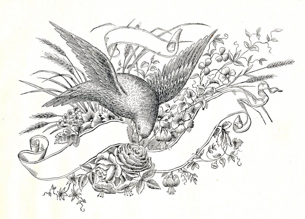 50 Favorite Wedding Graphics and DIYs // The Graphics Fairy