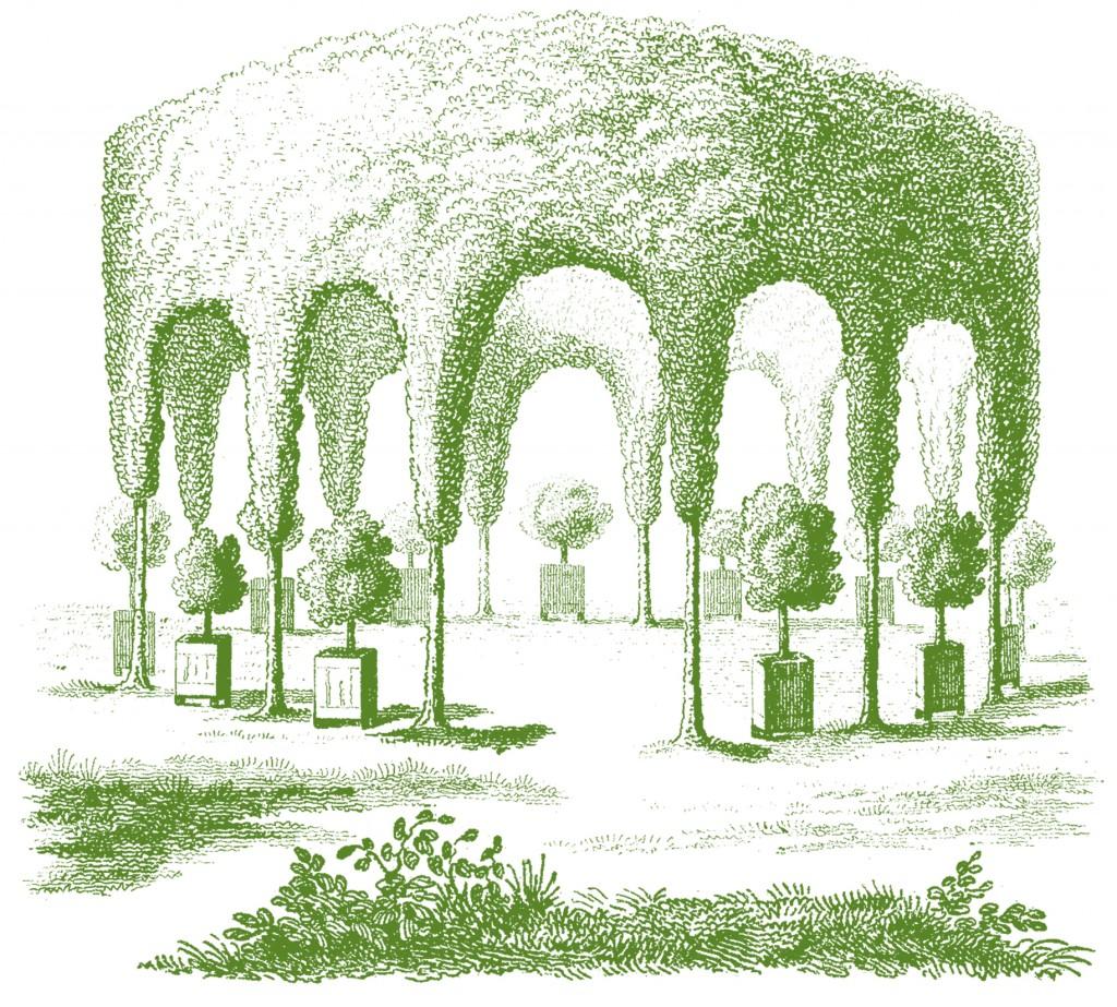 Garden Hedge Gazebo Graphics