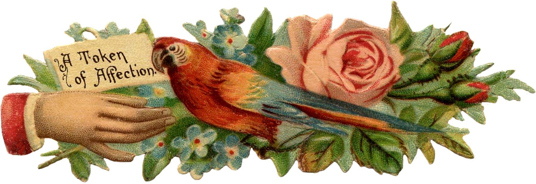 Victorian Scrap Hand with Parrot