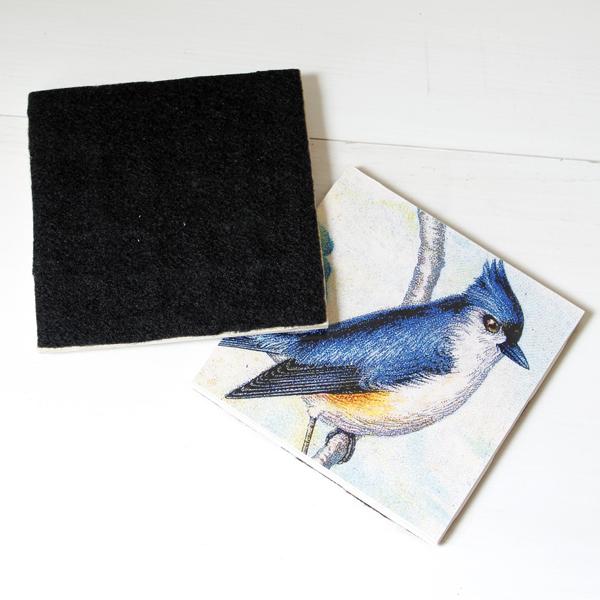 BirdCoasters-8