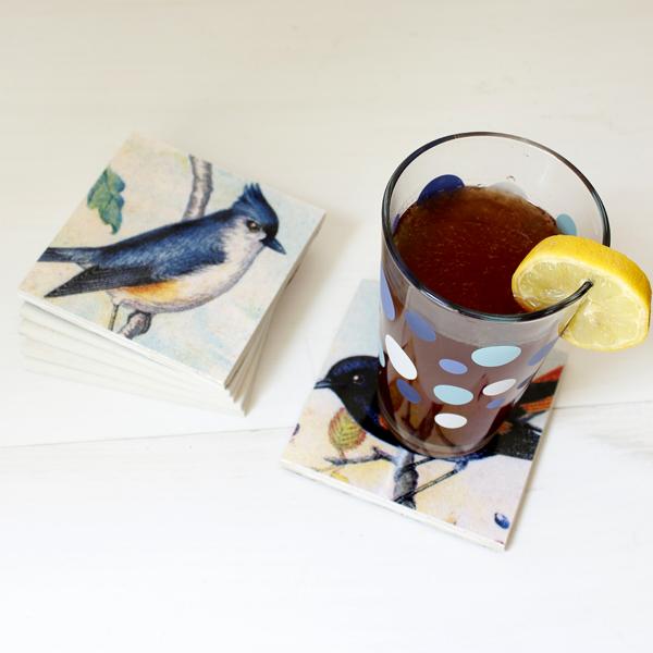BirdCoasters-9