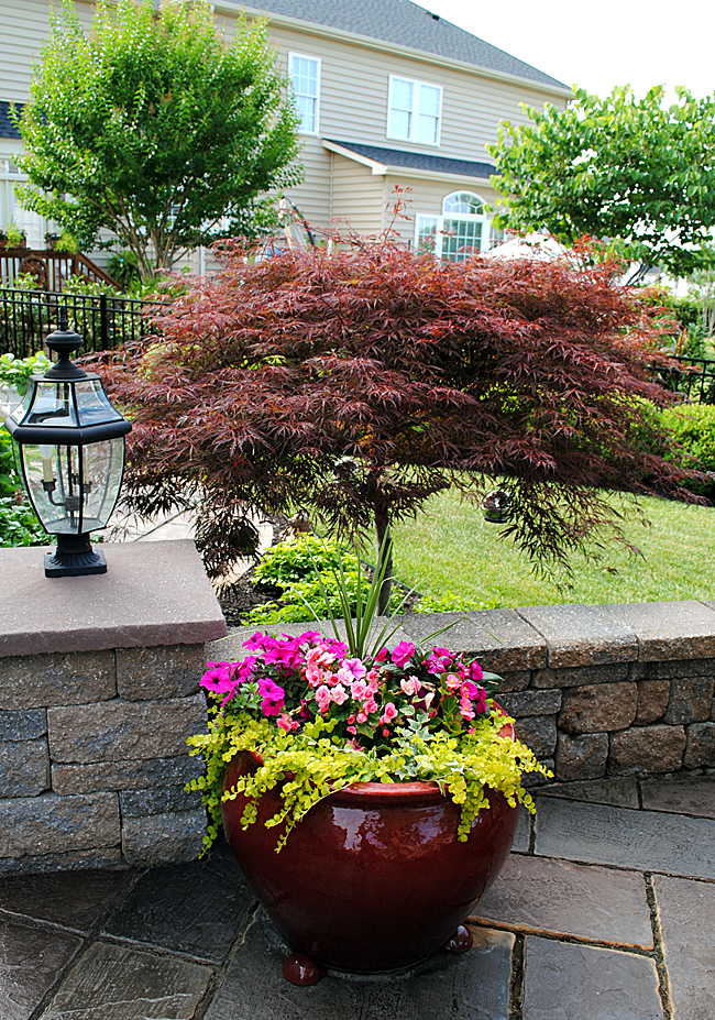 landscape ideas use garden pots