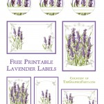 Labels_Lavender_GraphicsFai