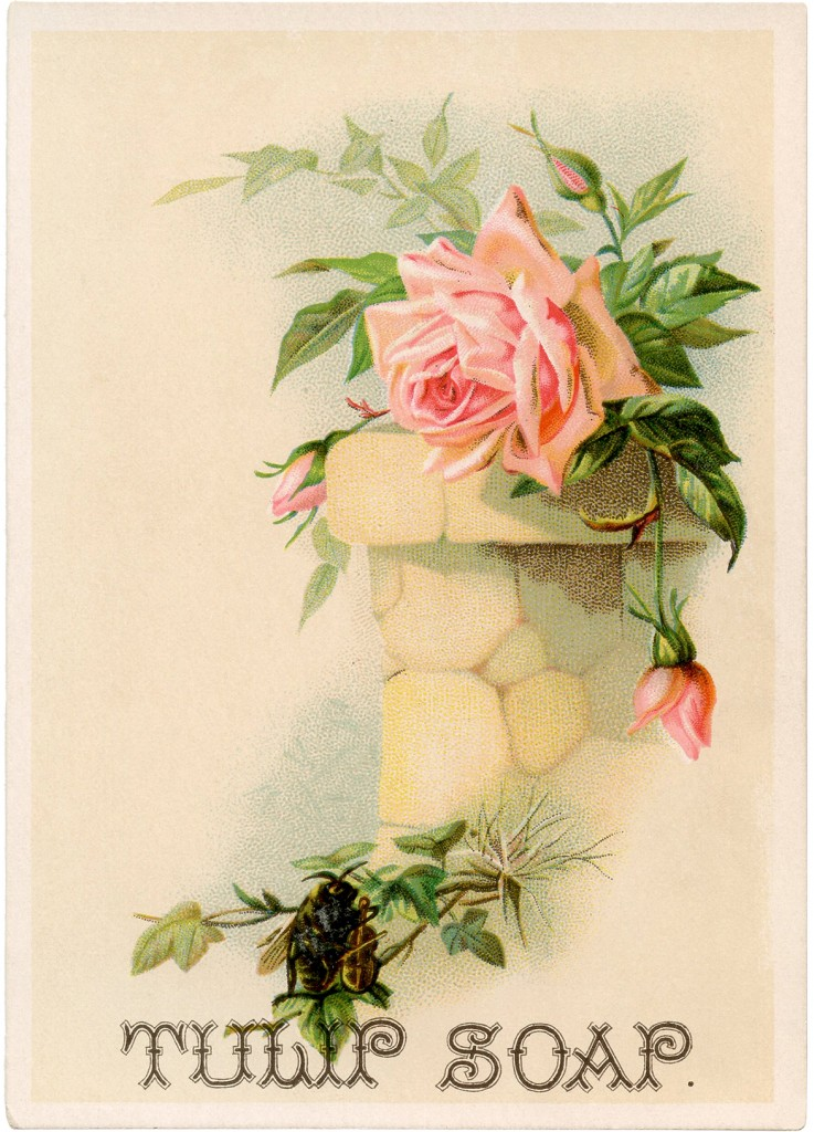 Vintage Soap Ad Pink Roses The Graphics Fairy