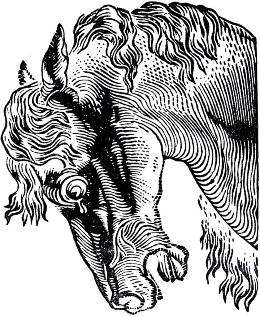 Vintage Stylized Horse Image