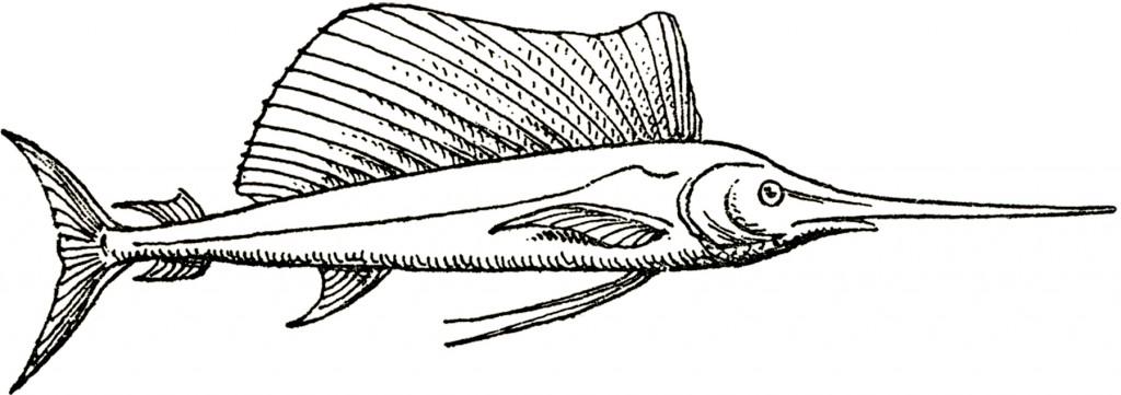 Vintage Swordfish Image