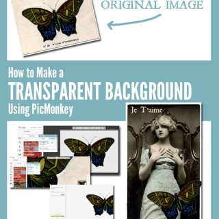Make a Transparent Background Using PicMonkey
