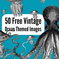 50 Free Vintage Ocean Images