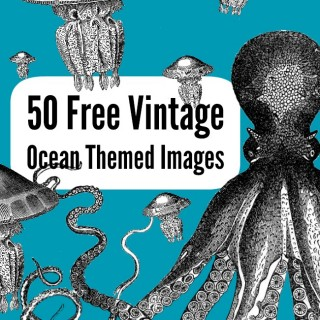 50 Free Ocean Themed Graphics!
