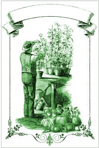 Garden Mason Jar Labels // The Graphics Fairy