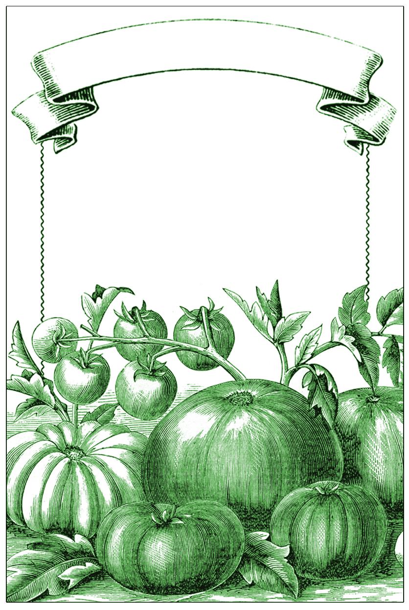 Garden Mason Jar Labels The Graphics Fairy