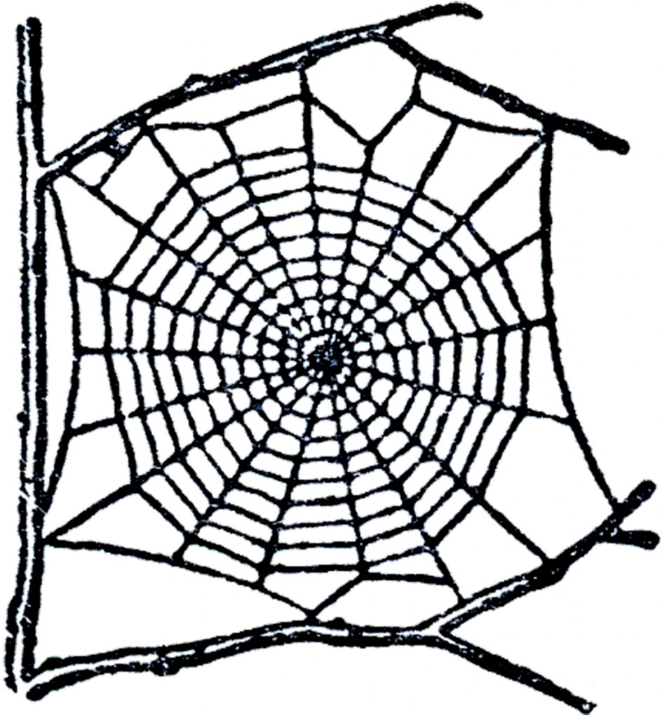 Free Spider Web Clip Art