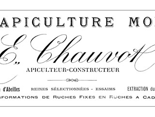 French Beekeeper's Letterhead Transfer