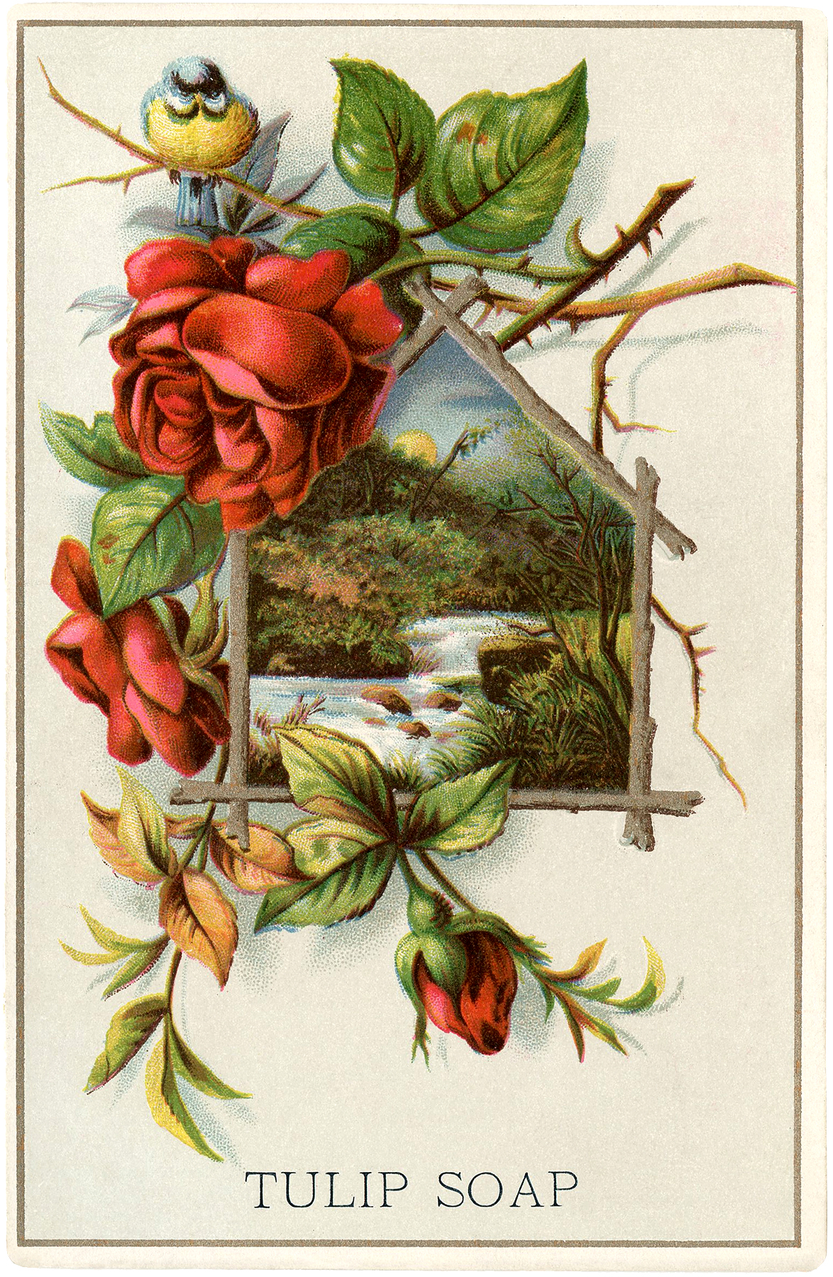 lovely vintage landscape with roses the graphics fairy