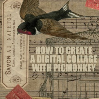 How to Create a Digital Collage with PicMonkey!