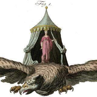 Lady Flying on Bird Image