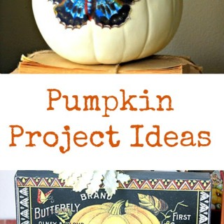 8 Pumpkin Project Ideas