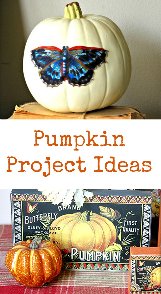 Pumpkin Project Ideas