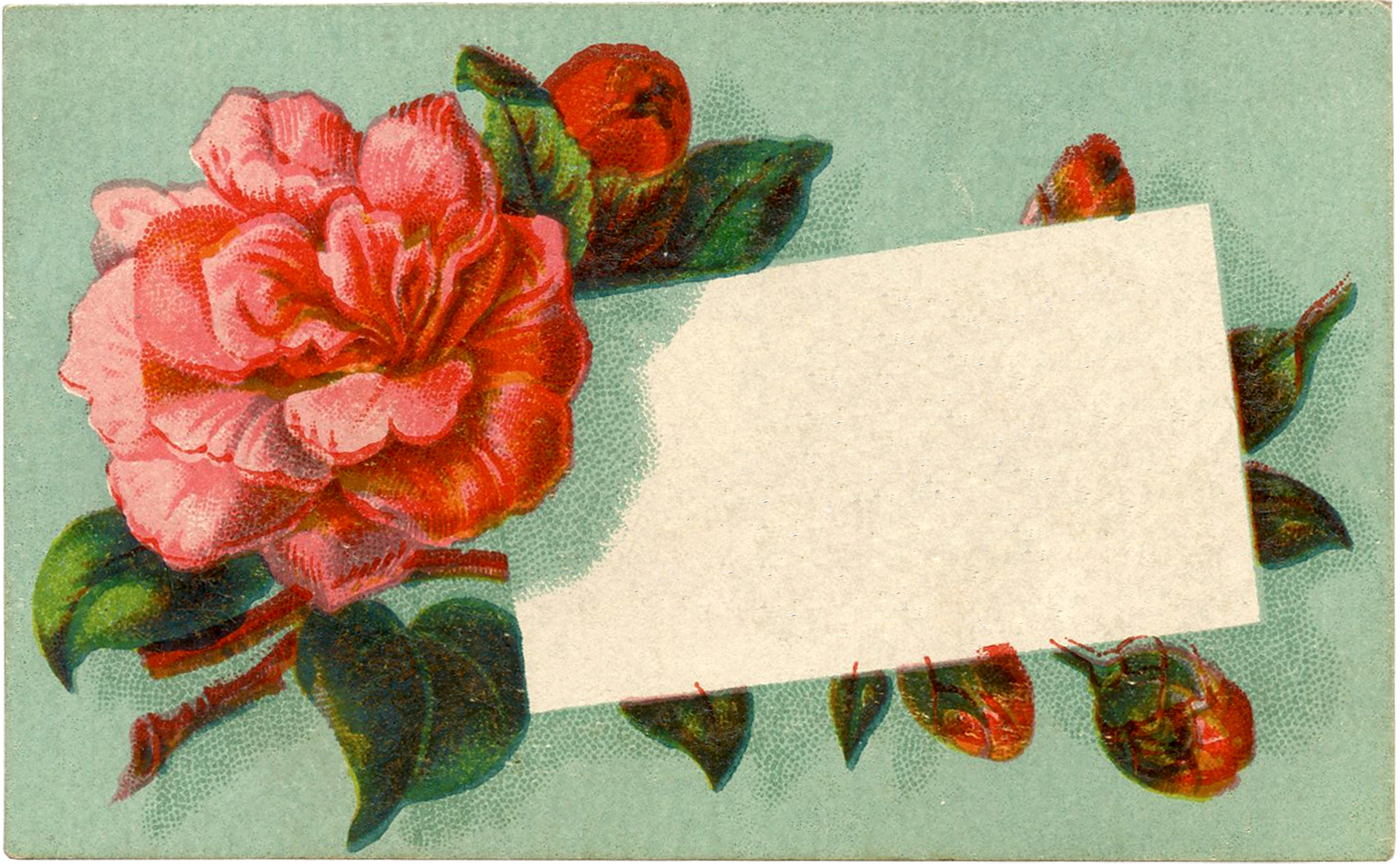Red Rose Calling Card // The Graphics Fairy