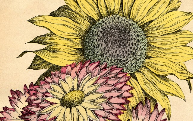 Lovely Vintage Sunflower Printable!