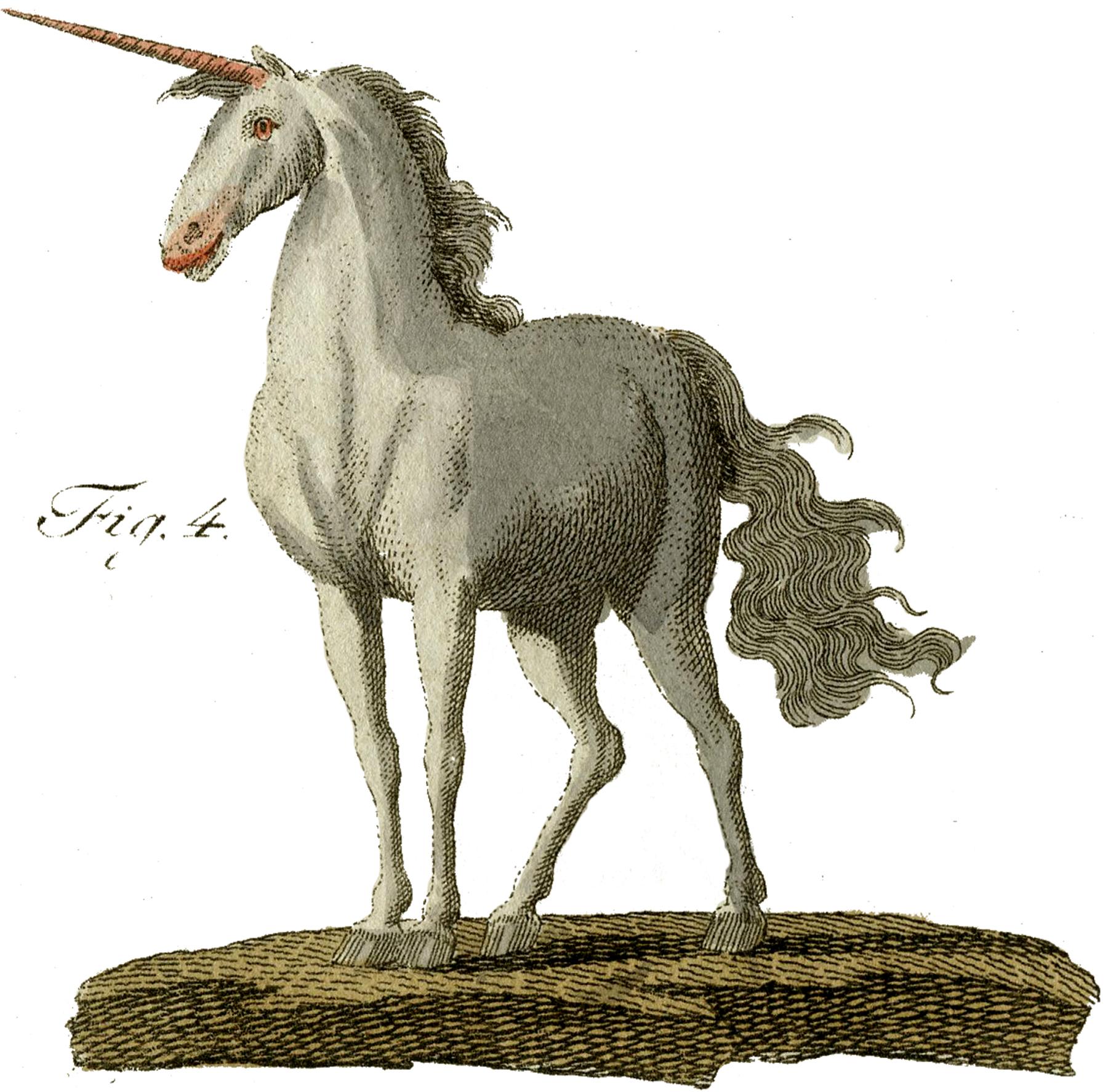Vintage Unicorn Image Rare The Graphics Fairy