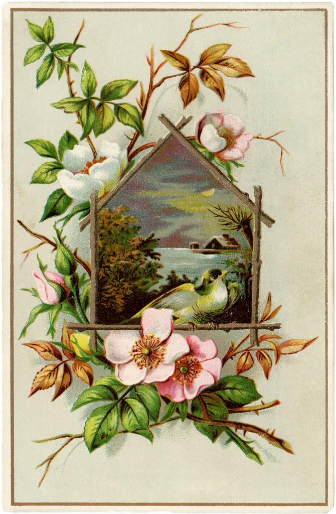 Wild Roses Card