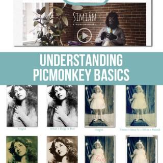 Understanding PicMonkey Basics!