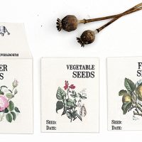 seed-packet-download_100dpi_550w