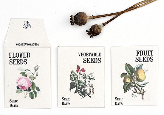 image about Printable Seed Packets identify Printable Seed Packets - Reader Highlighted Undertaking - The