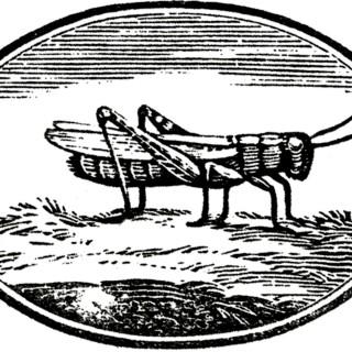Vintage Grasshopper Label Image