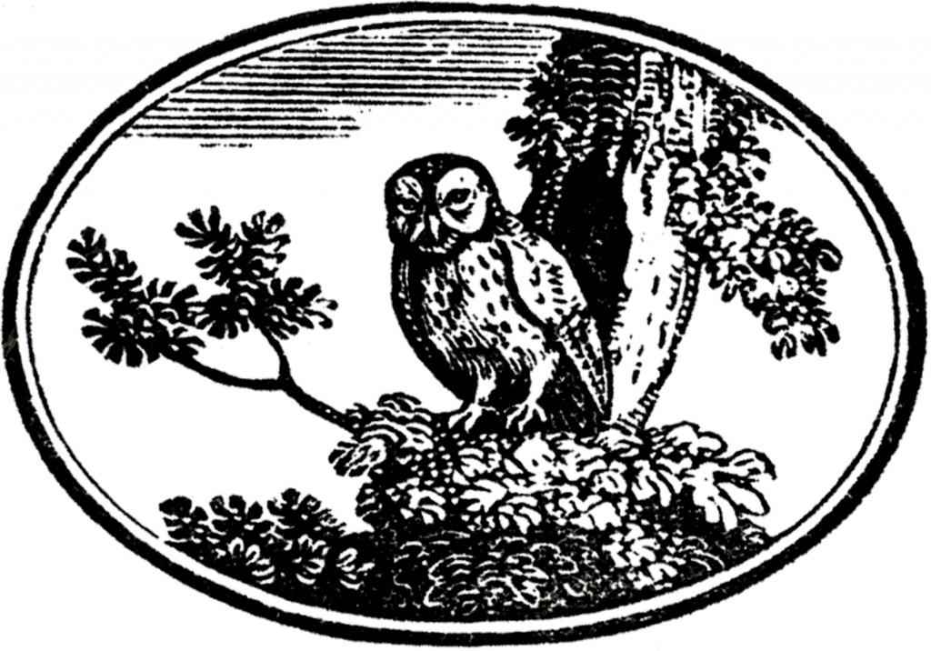 Vintage Owl Label