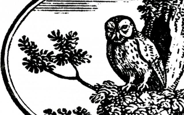 Vintage Owl Label – Halloween-ish!
