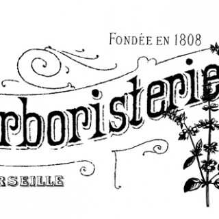 French Herbal Shop Transfer