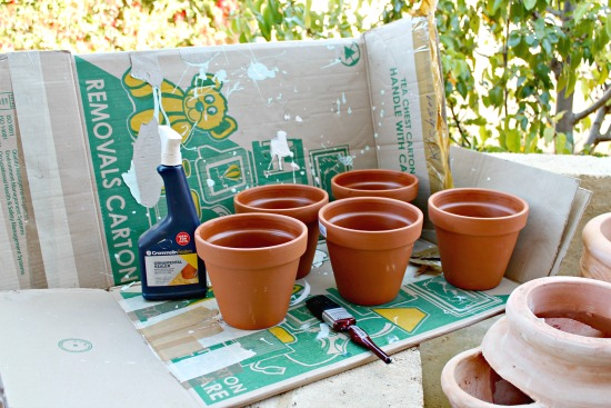 Painted Terra Cotta Pots - Reader Featured Project