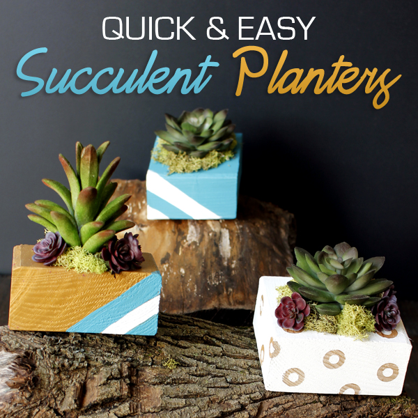 SUCCULENTPLANTER-FEATURED