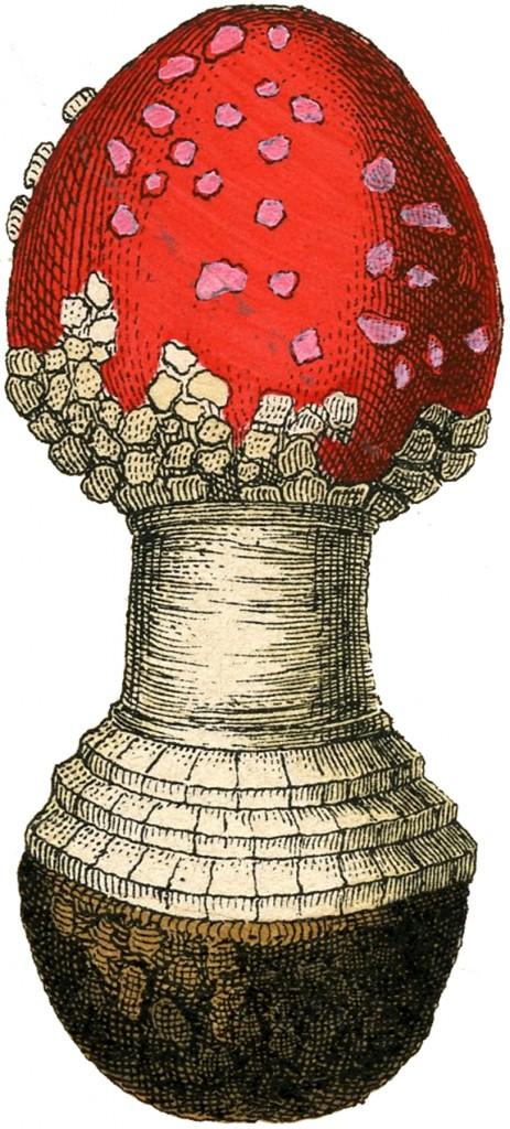 Vintage Red Mushroom Clip Art