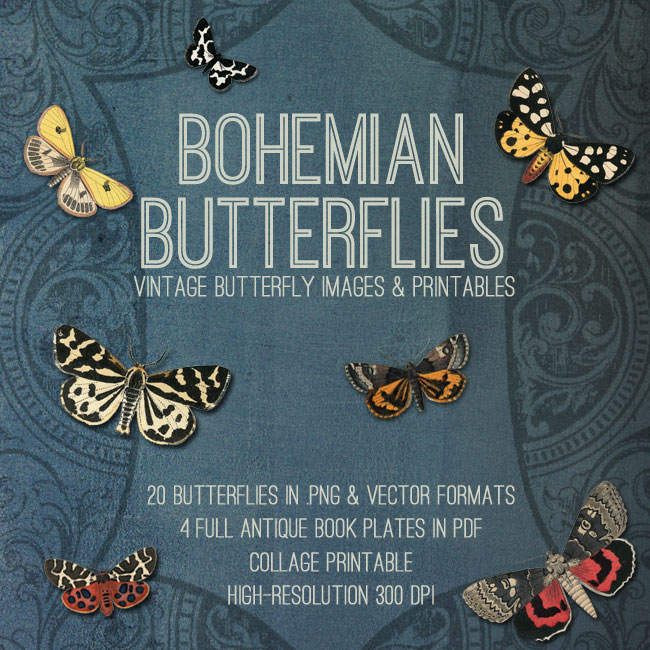 Bohemian Butterflies Collection