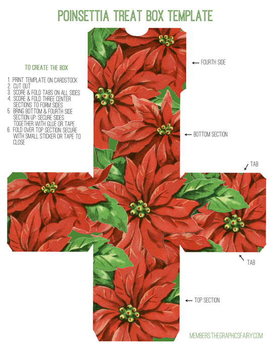 retro-poinsettia-box-graphicsfairy