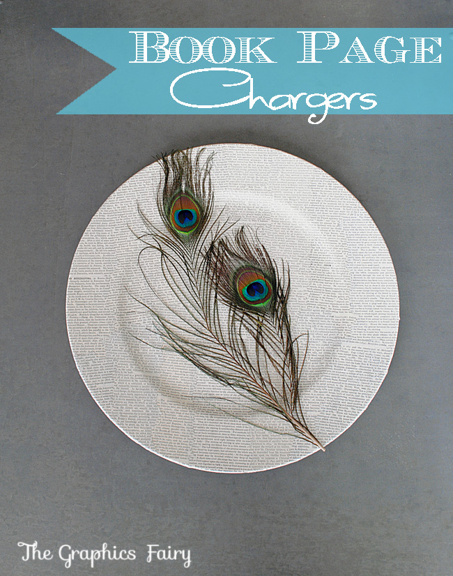 06 - Book Page Chargers