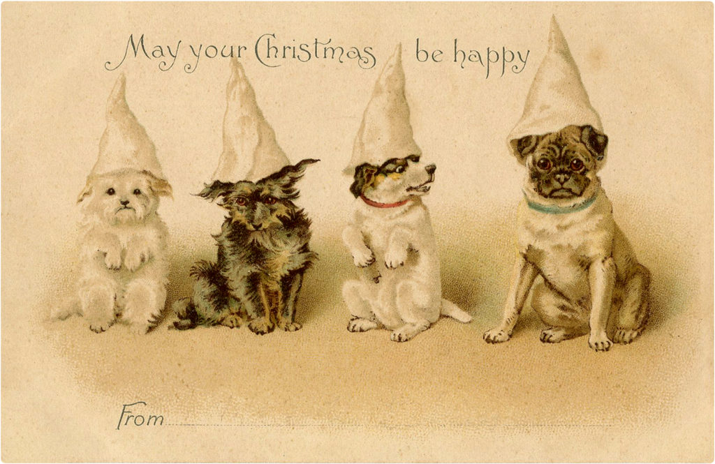 Christmas Dogs with Hats Image