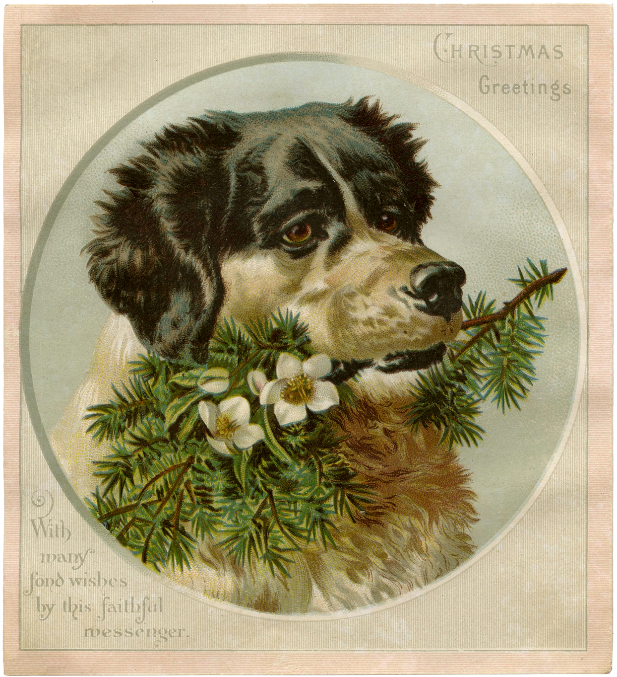 Vintage Christmas Dog Image The Graphics Fairy