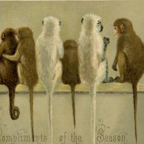 Vintage Christmas Monkey Image