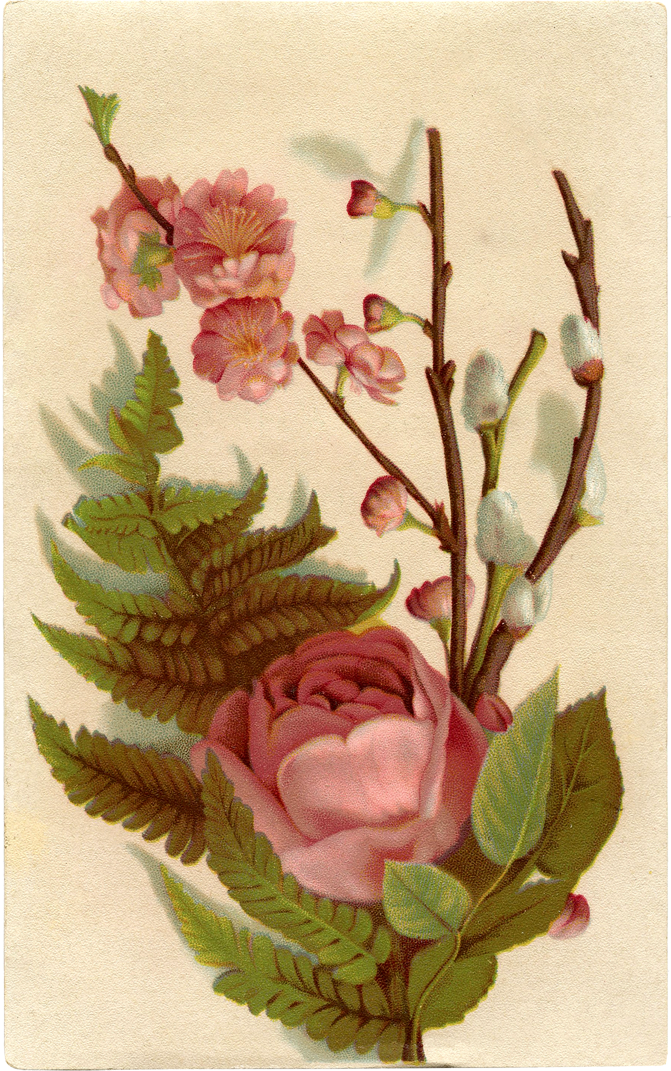 Romantic Pink Roses Picture The Graphics Fairy