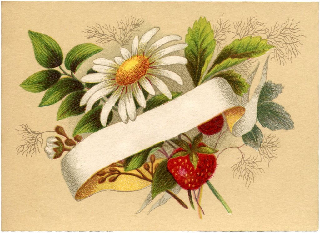 Vintage Strawberry Label Image